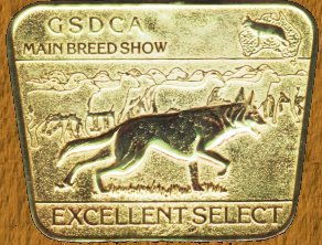 Excellent Select  Show Medal